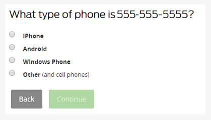 What type of phone
