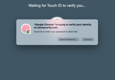 Enter Touch ID and Wait for Verification